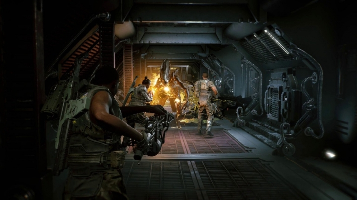 Aliens: Fireteam Elite Guide and Secrets.  Is there a single player mode or a story campaign?